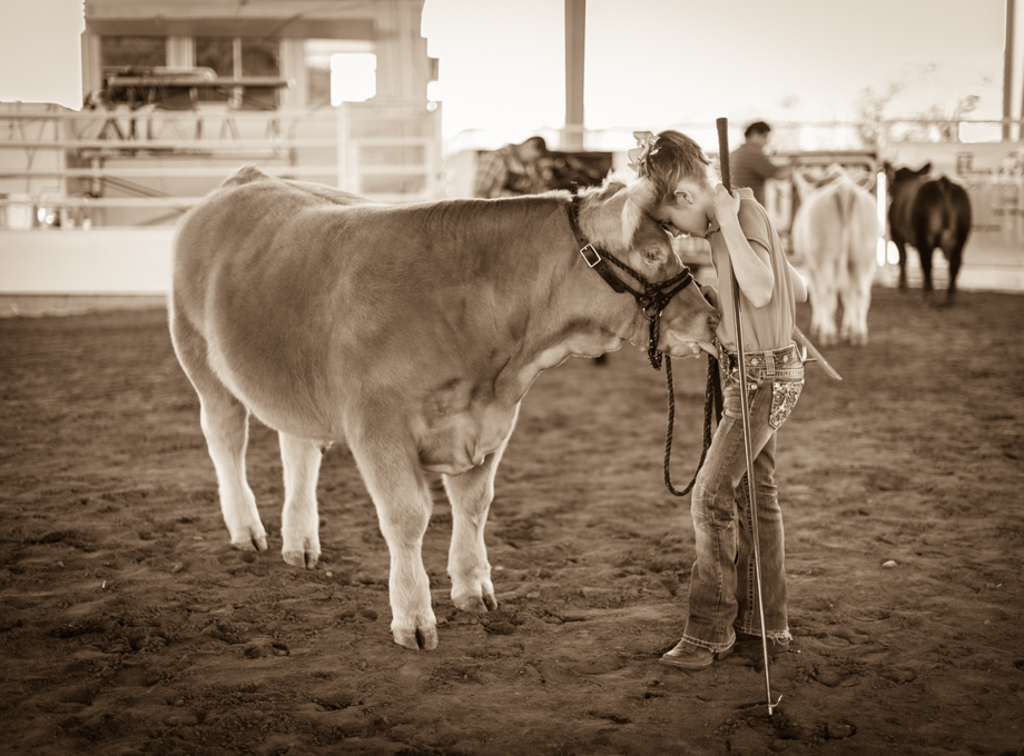 A young participant shares a quiet moment with her cow at the 2015 Guadalupe County Fair in Seguin.